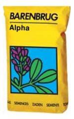 Seminte de lucerna Alpha