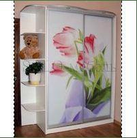 Шкаф-купе с фотопечатью (цветы)