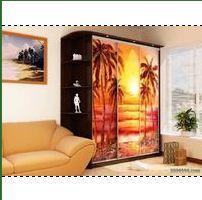 Шкаф-купе с фотопечатью с пальмами на фоне заката