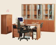 Muebles de oficinas y tiendas