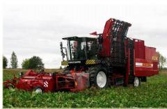 Semitrailer PT25 PKK-2-05 PALESSE potato harvester