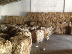 Овечья шерсть в Молдове на Экспорт