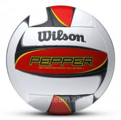 Pepper volleyball
