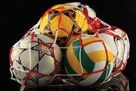 Grid for transfer of balls
