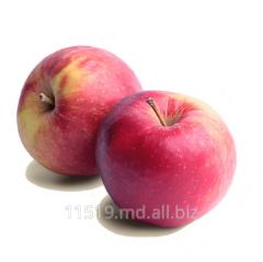 Apples grade Aydared