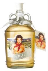 Белое полусладкое вино Latinos Love Muscat (2 л)