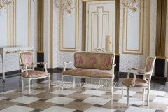 Set of upholstered furniture Ergolemn-Arcadia