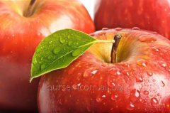 Яблоки сочные натуральные