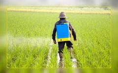 Argument 480 SL herbicide