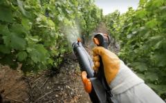 Felix WDG herbicide