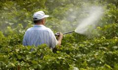 Инсектициды в Молдове