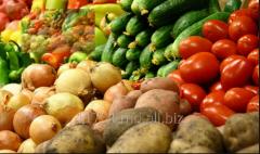 Вырашивание овошей  и зерновых кулитур