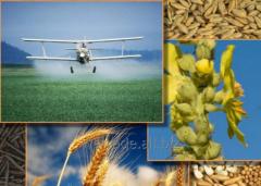 Zamir 40 EW fungicide for wheat and Zamir 40 EW