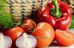 Овощь свежий Alfa-Nistru
