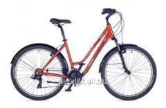 Brava 2016 bicycle