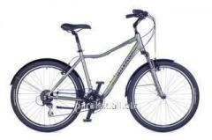 Rapid 2016 bicycle