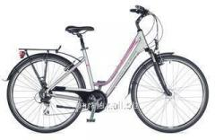 Dynasty 2015 bicycle