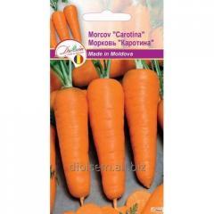 Semyon Evro Carotene Carrots