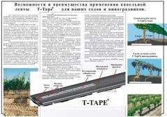 Banda picurare T-TAPE pentru gradina si struguri