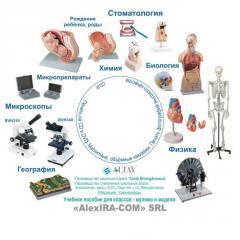Educational visual aids, MODELS, MODELS