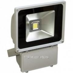 Прожектор светодиодный  Feron LL-151