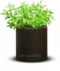 Cache-pot country S rattan of CYLINDER