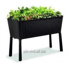 Cutii pentru creştere de flori