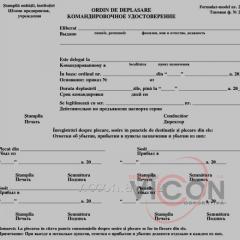 Командировочное удостоверение + Авансовый отчет