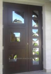 Entrance door model 1-1