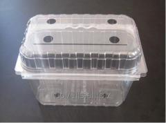 Containere alimentare