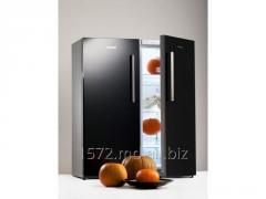 Refrigerator Snaige C29 + F22 Glassy