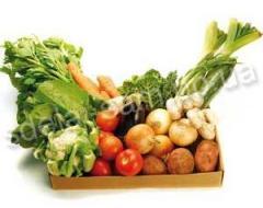 Acoperisuri pentru pastrare de produse agricole