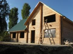 Felling from Eximol!