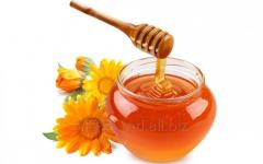 Мед пчелиный(Miere de albine)