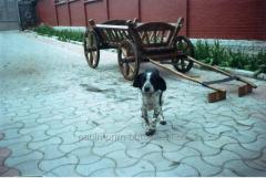 Cart wooden