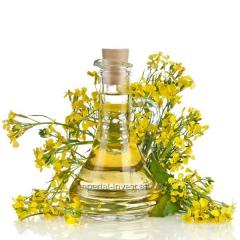 Rapeseed oil is bottled and draft