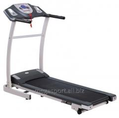 Dayly Youth KL-1301 racetrack. Exercise machines.