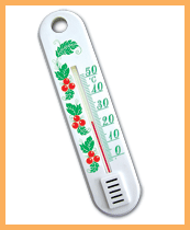 P-1 thermometer