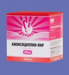 Amoksitsillin - RNP