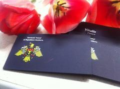 Печатная продукция Cărți de vizite din plike