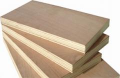 Plywood 1,52x52m