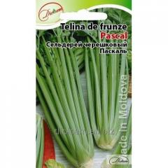 Celery cereshkovy Pascal 0.5 g.
