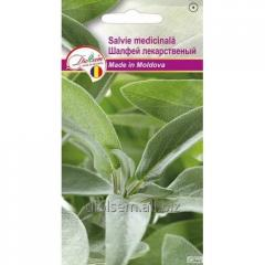 Salvia officinalis 0,1 GR.
