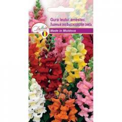 Семена цветов Львиный зев Высокорослая смесь