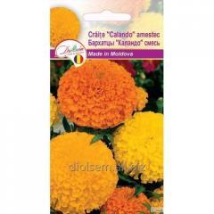 Семена цветов Бархатцы Каландо смесь 0,4гр.