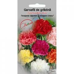Семена цветов Бархатцы отклонённые смесь 0,2гр.