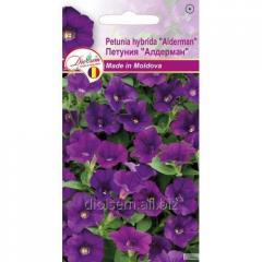 Семена цветов Петуния Алдерман 0,1гр.