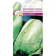 Seeds of headed Chinese cabbage Kantoner 1gr