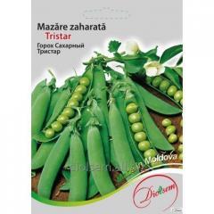 Sugar Pea seeds Tristar 20gr.