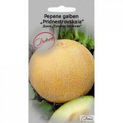 Melon seeds Transnistrian 1gr